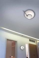 buy Ceiling & Wall Lamp Ibis c27