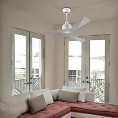 buy MORGAN Ceiling Fan with light