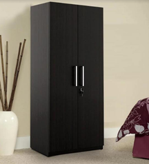 buy Designer 2 door Wardrobe