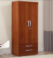 buy Elegant 2 door Wardrobe